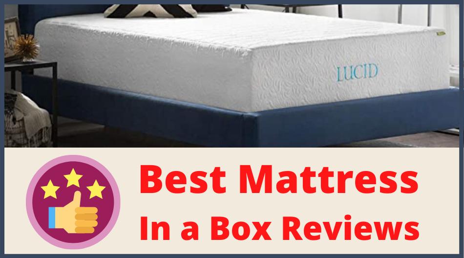 Leesa bed vs. Bed in a box